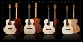 G. W. Barry Hand Built Guitars Grouping