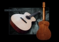 G. W. Barry Hand Built Guitars Full Back