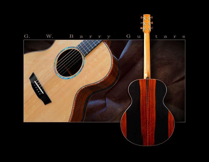 G. W. Barry Hand Built Guitars Brazilian Angle