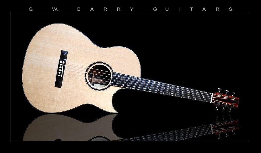 G. W. Barry Hand Built Guitars Horizontal Reflection