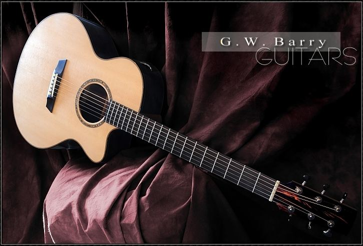 G. W. Barry Hand Built Guitars Blackwood