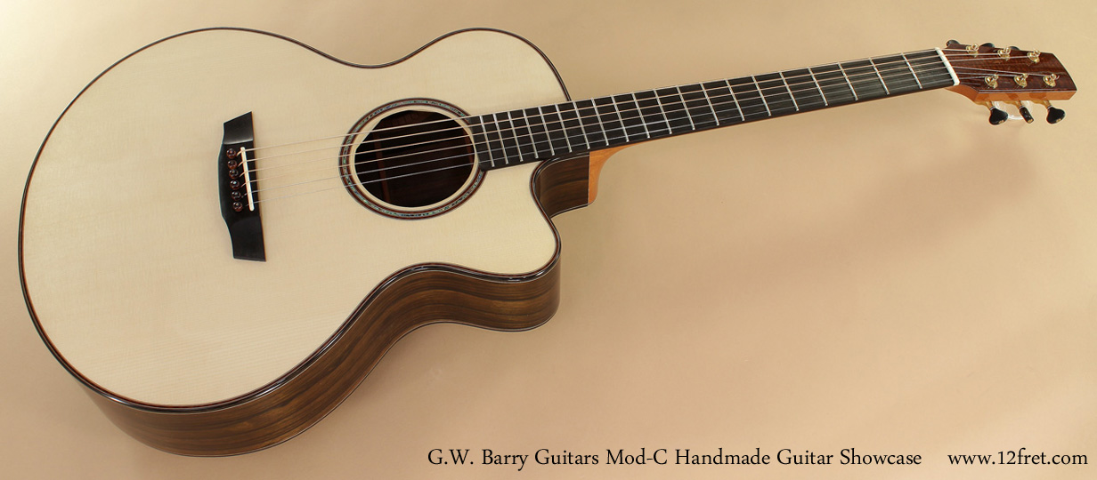 G. W. Barry Hand Built Guitars Mod C Front View