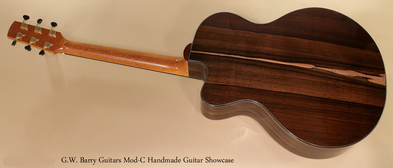 G. W. Barry Hand Built Guitars Mod C Rear View