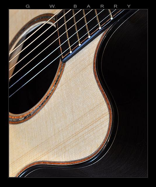 G. W. Barry Hand Built Guitars Cutaway Detail