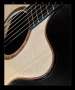 G. W. Barry Hand Built Guitars Cutaway Detail