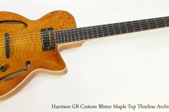 Harrison GB Custom Blister Maple Top Thinline Archtop, 2019   Full Front View