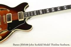 Ibanez JSM100 John Scofield Model Thinline Sunburst, 2009 Full Rear VIew
