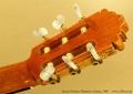 james-frieson-flamenco-1997-ss-head-rear-1