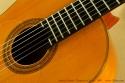 james-frieson-flamenco-1997-ss-rosette-1