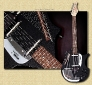 Jerry_Jones_Electric_Sitar_black