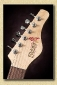 Jerry_Jones_Electric_Sitar_blackb