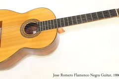 Jose Romero Flamenco Negra Guitar, 1996 Full Front View