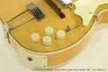 Kay Pro K172-B Thinline Archtop Electric Guitar Honey Blonde, 1956 Controls View