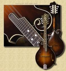 Kentucky_KM-1000_mandolin
