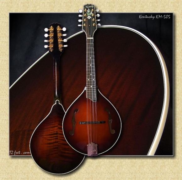 Kentucky_KM-505_mandolin