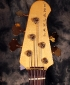 Lakland_head_front
