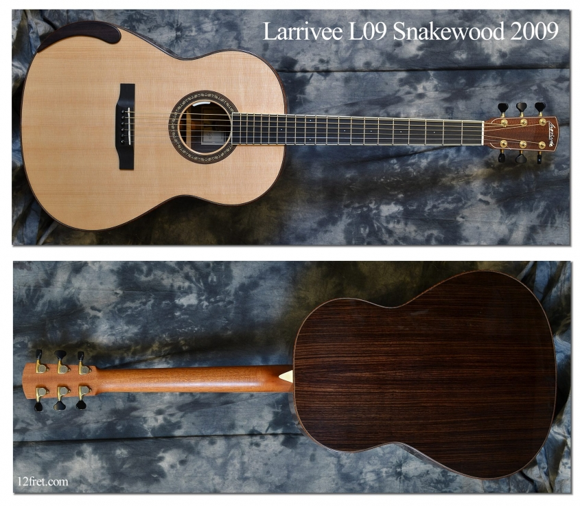 Larrivee_L09 Snakewood_2009(C)