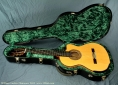 laskin-cook-flamenco-case-open-1