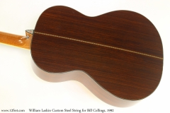 William Laskin Custom Steel String for Bill Collings, 1992 Back View