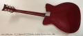 C. F. Martin GT-75 Thinline Archtop Electric Guitar, 1966 Full Rear View