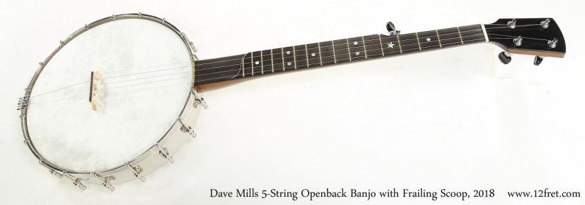 Dave Mills 5-String Openback Banjo with Frailing Scoop, 2018   Full Front View