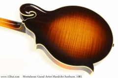 Monteleone Grand Artist Mandolin Sunburst, 1985 Back View
