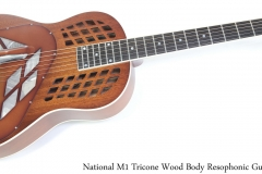 National M-1 Tricone Wood Body Resophonic Guitar Full Front View