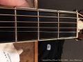 National Reso-Phonic Style 0, 2004  Fret Wear