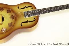 National Triolian 12 Fret Neck Walnut Burst    Full Front View