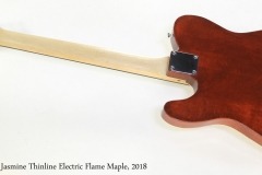 Norfolk Jasmine Thinline Electric Flame Maple, 2018   Full Rear View