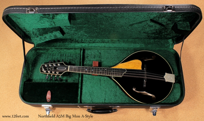 Northfield A-Style A5M Big Mon mandolin case open front view