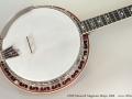 ome-monarch-megatone-banjo-2006-cons-top
