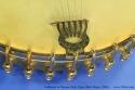 openback-banjo-1890s-ss-tailpiece-2