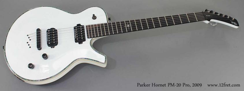 Parker Hornet PM-20 Pro 2009 full front view