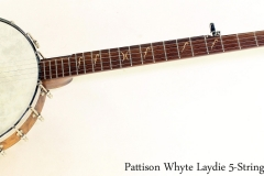 Pattison Whyte Laydie 5-String Banjo Full Front View