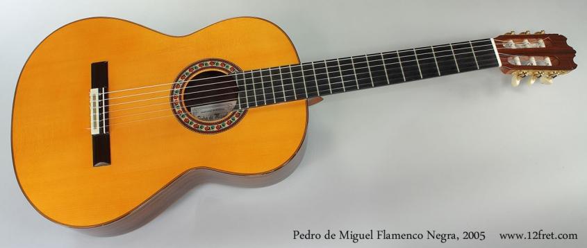 Pedro de Miguel Flamenco Negra, 2005 Full Front View