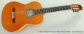 Pedro de Miguel Flamenco Blanca Guitar, 2002 Full Front View