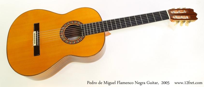 Pedro de Miguel Flamenco Negra Guitar,  2005 Full Front View