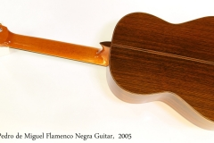 Pedro de Miguel Flamenco Negra Guitar,  2005 Full Rear View