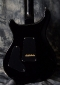 PRS_Cust_24_Black_Back