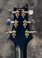 PRS_Custom24_10Top_Blue2011_Tuners