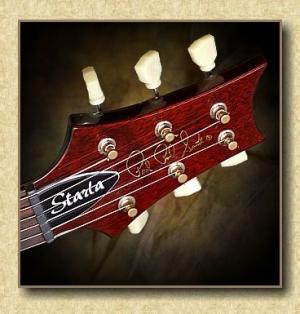 PRS_Starla_guitar_b