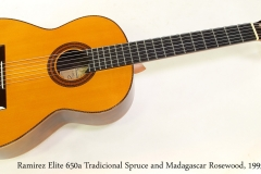 Ramirez Elite 650a Tradicional Spruce and Madagascar Rosewood, 1995 Full Front View