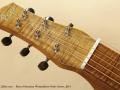 Rayco Hawaiian Weissenborn Style Guitar 2014 head front