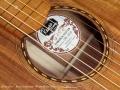 Rayco Hawaiian Weissenborn Style Guitar 2014 label