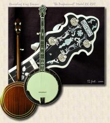 Recording_King_Professional_RK-R80_banjo