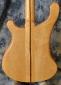 Rickenbacker_4001 bass_1976(C)_back detail