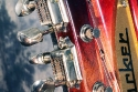 Rickenbacker_Tom-Petty_head_detail