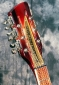 Rickenbacker_Tom-Petty_head_detail2