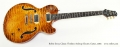 Robin Savoy Classic Thinline Archtop Electric Guitar, 2004 Full Front View